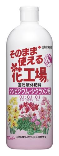 そのまま使える花工場シンビジウム・シクラメン用写真